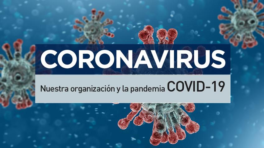 Tiflonexos en el contexto actual – Nuestra organización y la epidemia COVID-19
